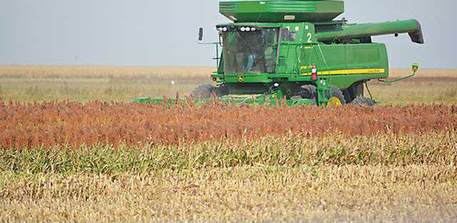 new deh crop certification deadline pic web