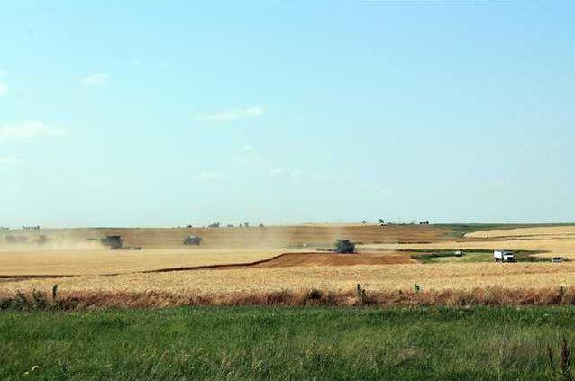 new vlc harvest story pic