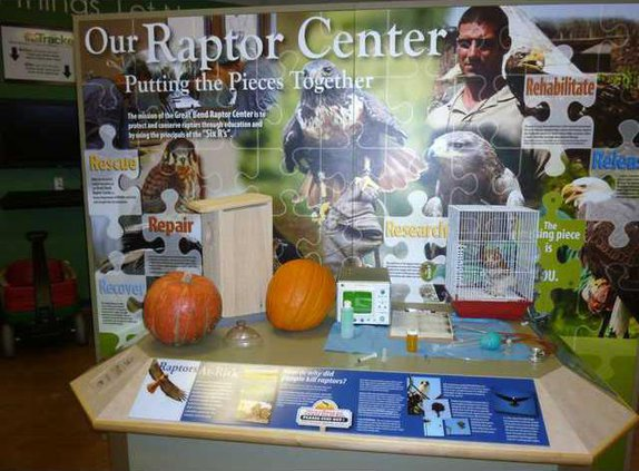 zoo st our raptor center