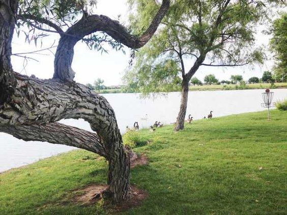 new deh vets lake