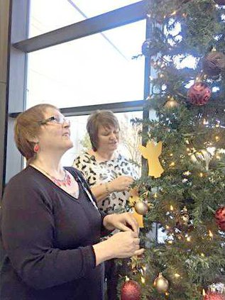 new slt GBHHH tree-of-life