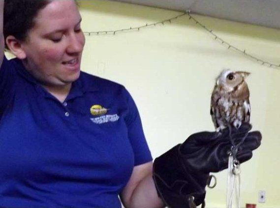 aycock with owl photo alternate