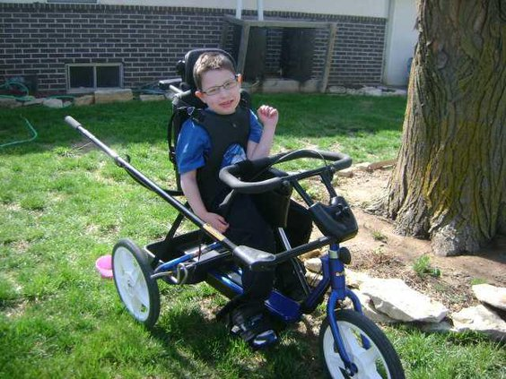 biz or loc Sunflower bike