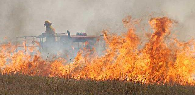 new deh burn advisory pic
