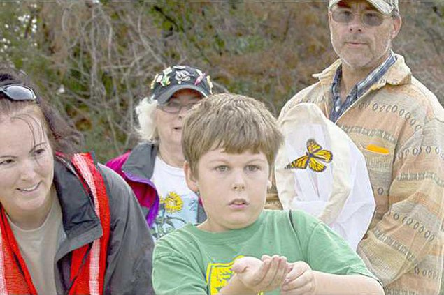 new deh kwec butterfly fest pic web