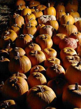 chu slt pumpkins many