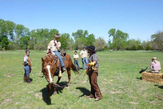 new KL HORSE RIDER