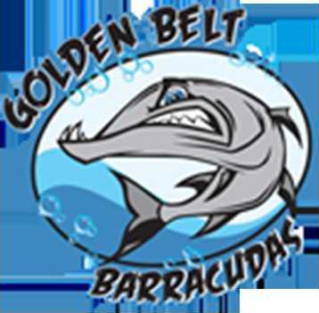 barracuda20web.png