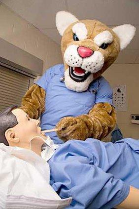 loc or edu  slt nursing