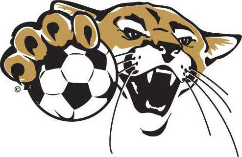 Soccer2Emblem3ClrWeb