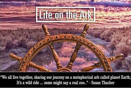 Life-on-the-Ark172-424x285