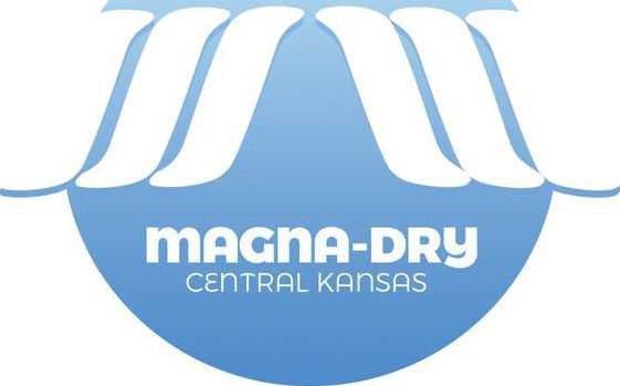 biz slt magna dry logo