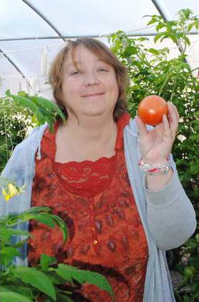 biz slt tomato