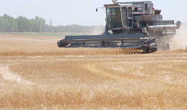 new deh harvest pic