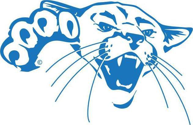 barton cougar headblue.png