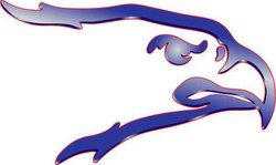 spt kp Ellinwood logo