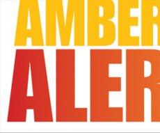 new_vlc_Amber alert logo.jpg