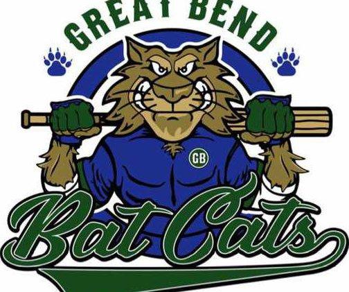 bat cats logo