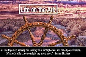 Life on the Ark.jpg
