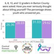local-suicide-graphic
